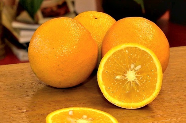 Cientistas estudam possível ação da vitamina C na terapia de depressão